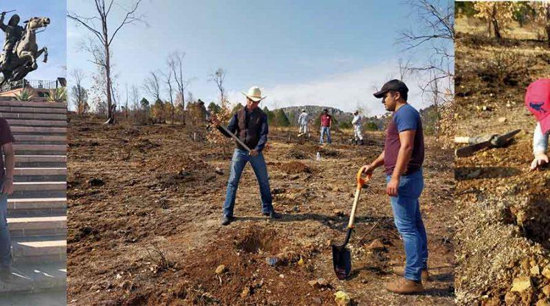México: Después de desastre forestal, la iniciativa de un estudiante del IPN promoverá la creación de un jardín botánico
